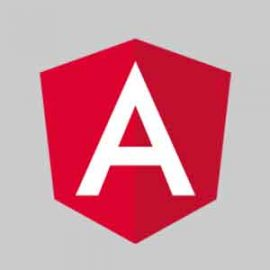 Angular Course Logo